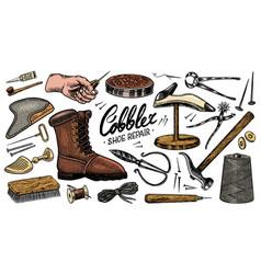 Cobbler set professional equipments for shoe vector