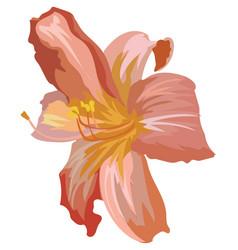 Flower 1 vector