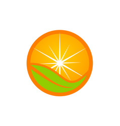 orange icon logo design template vector image