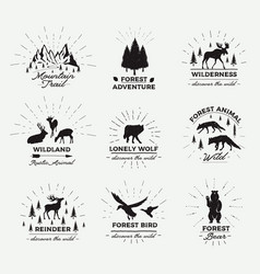 Outdoor emblems set wilderness quotes vector