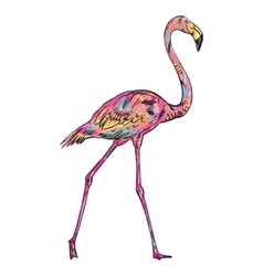 Pink flamingo isolated vector