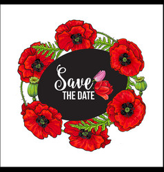 red poppy flower blossom blooming template vector image