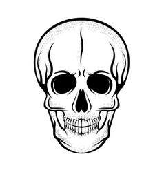 skull shadow monochrome vector image