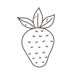 Strawberry fruit organic fresh nutrition healthy vector