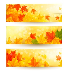 Three autumn banners with colorful leaves in vector