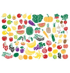 vegetables and fruits color vector image