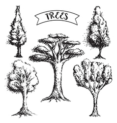 collection of vintage grunge trees vector image vector image