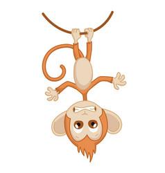 cute funny monkey colorful cartoon vector image