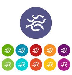 escherichia coli virus icons set color vector image