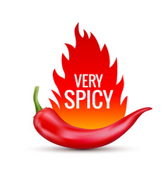 fresh red hot chili pepper kitchen organic vector image