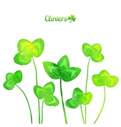 Green watercolor painted summer clover leaves vector image