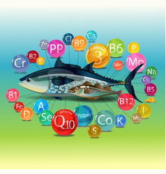Vitamins minerals and microelements found in fish vector