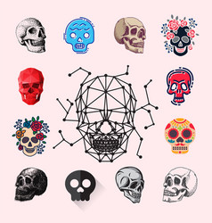 different style skulls faces vector image