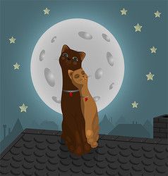 Pair of cats on the roof vector image