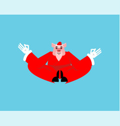 santa pig yoga christmas meditating piggy with vector image