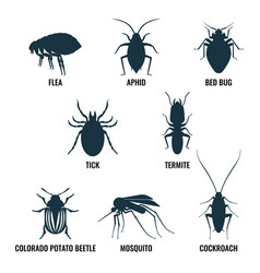 Set of insects icons ant and wasp cockroach and vector