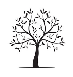 Natural tree with leaves vector