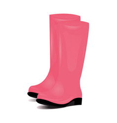 pair of pink rubber rain boots symbol of garden vector image
