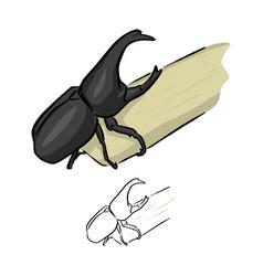 Beetles rhinoceros on sugarcane vector