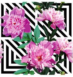 pink peony floral pattern geometric black vector image