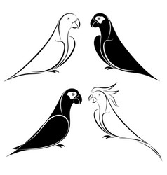 set of parrot vector image