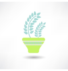 Flower in a pot icon vector image vector image