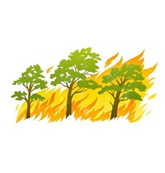 burning forest trees in fire vector image