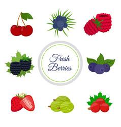 cartoon berries menu made in cartoon flat style vector image
