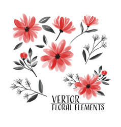 floral set floral collection watercolor vector image