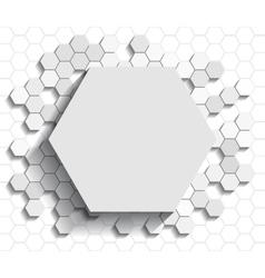 Hexagon flat background vector