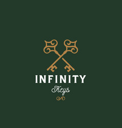 infinity keys abstract sign symbol or vector image