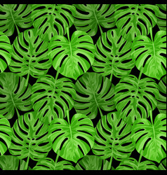 Monstera seamless pattern vector