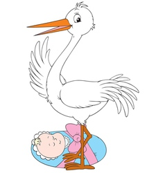 stork and newborn vector image