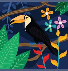 Toucan bird in dark background vector