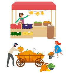 Woman selling organic products veggies market vector