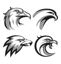 Black and grey eagle head logos set for business vector image