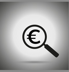 search money icon magnifier and euro symbol vector image vector image