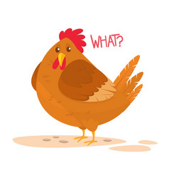 cartoon big fat hen isolated on a white backgroun vector image
