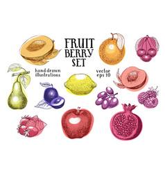 fruits hand drawn set retro vector image