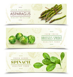 green vegetables realistic banners vector image