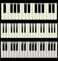 Piano keys vector image