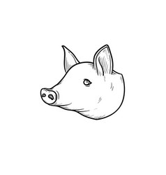 pork meat hand drawn sketch icon vector image