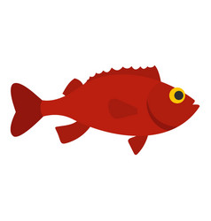 Red betta fish icon isolated vector
