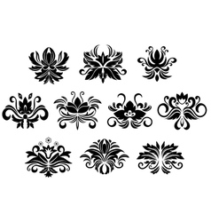 Retro floral and foliage design elements vector