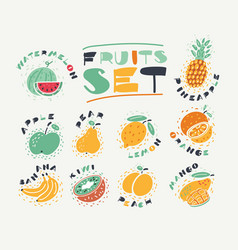 set collection fruits vector image