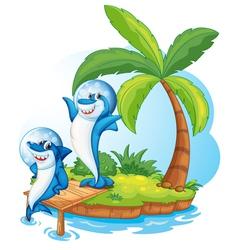Sharke on island vector image