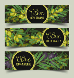 signs for shop with olive branches with berry vector image