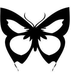 vlinderthumb vector image