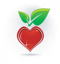 heart with leaf vector image vector image