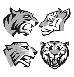 Black and grey tiger head logos set for business vector image